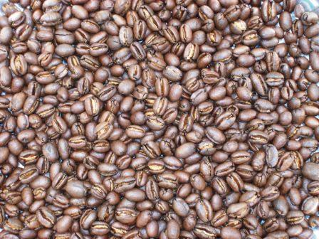Roasted Peaberry