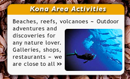 Kona Activities and Area Information for Mango Sunset Bed & Breakfast Inn Guests and Friends